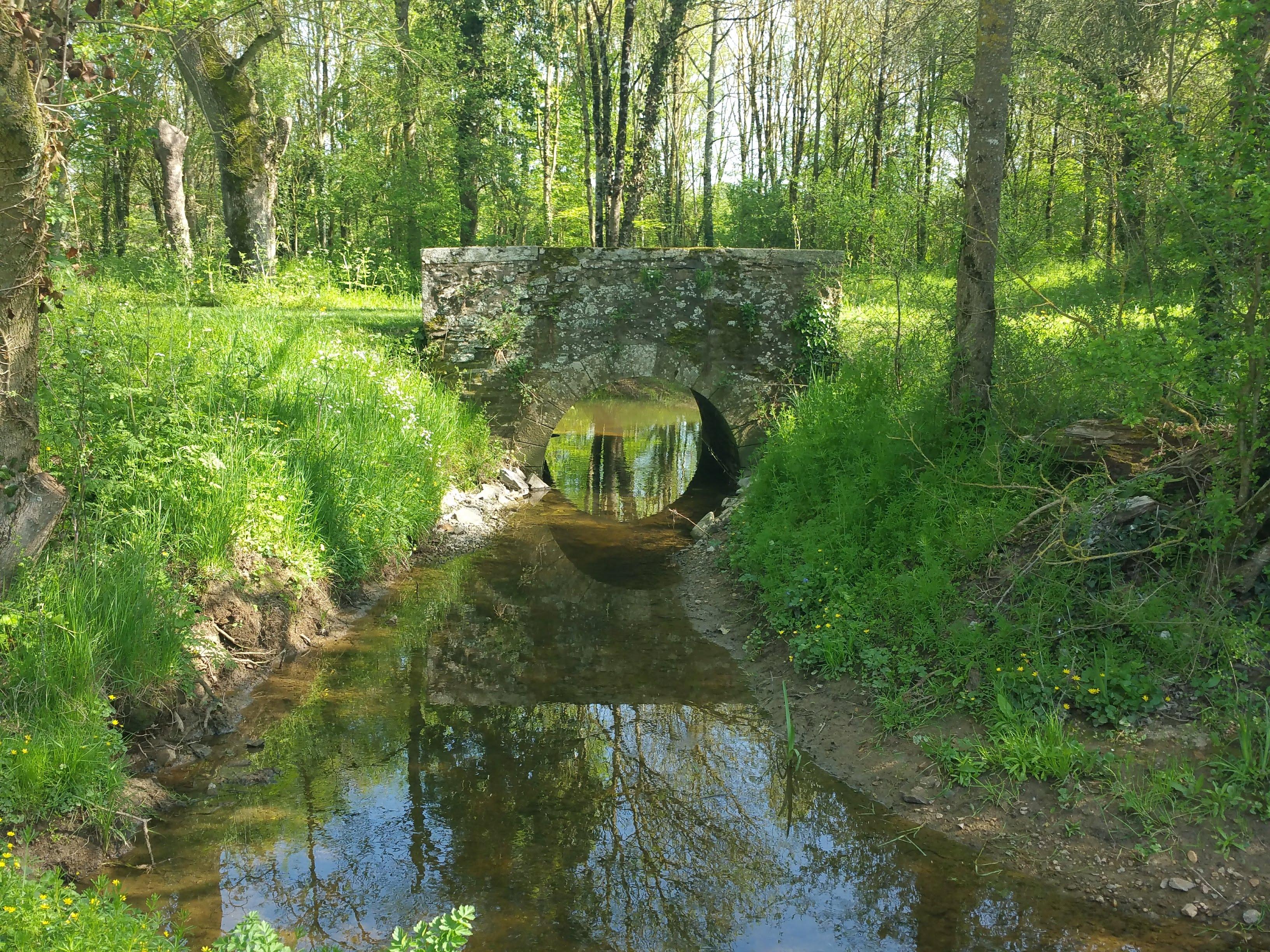 Restauration de l'Issoire au domaine de la Chabotterie à Montréverd (85) : après travaux